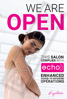 ECHO - We are Open Window Poster